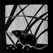 MiceTimes