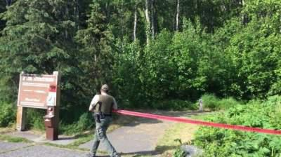 Teenager killed by bear during mountain race