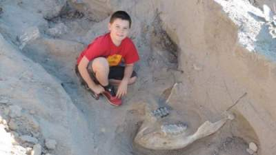 Young boy trips and falls onto exposed elephant-like fossil