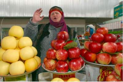 Modern apples said to have originated in Kazakhstan