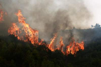 Greek firefighters close to containing wildfire near Athens