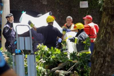 '11 killed' by falling tree at Madeira festival