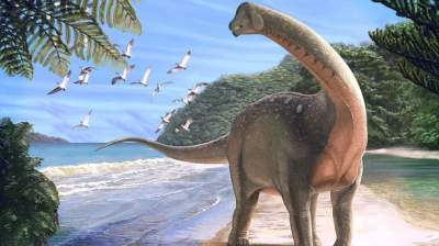 New dinosaur remains a 'critical discovery for Egyptian and African palaeontology'