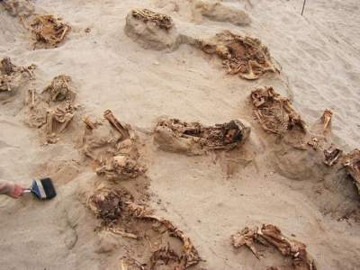 Largest little one sacrifice in historical past found in Peru