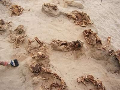 Children's Remains Found in Peru, Indicates Largest Child Sacrifice